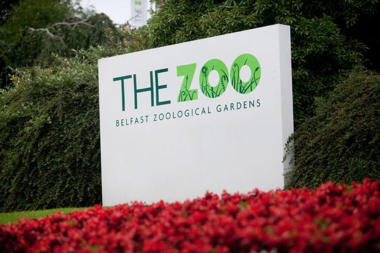 belfast-zoo-useful-stuff-large1