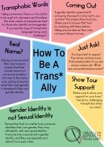 How-to-be-a-Trans-Ally-copy.jpg